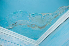 Mold in a edge of a room Royalty Free Stock Images