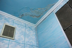 Mold in a edge of a room Royalty Free Stock Photography