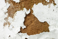 Mold Fungus Peeling Flaking Paint Due to Rising Damp Royalty Free Stock Image
