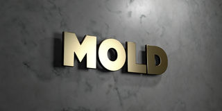 Mold - Gold sign mounted on glossy marble wall  - 3D rendered royalty free stock illustration. This image can be used for an online website banner ad or a Stock Photo