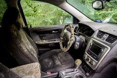 Mold growing inside a flooded car after Hurricane Harvey stock images