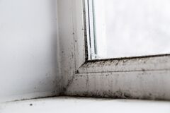 Free Mold In The Corner Of The Window Stock Photography - 179779102