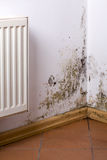 Mold problem in home. Mold and fungus problem near heater hanging on the corner royalty free stock photos