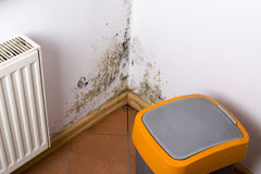 Mold problem in home. Mold and fungus problem near heater hanging on the corner royalty free stock photo
