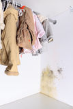 Mold problem in home. Persistent mold in wardrobe on wall and shelves. Hanging kids clothes on the rack stock photos