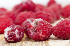 Mold on the raspberries Stock Images