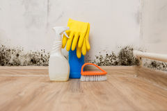 Mold in the room. Removing mold allergen in a wet room royalty free stock photos