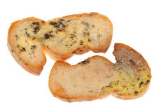 Mold  On A Stale Breads Royalty Free Stock Image