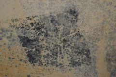 Mold in the wall Stock Images