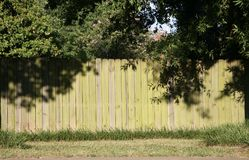 Mold on a Wooden Fence Stock Images