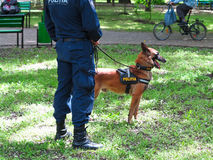 14 05 2016, Moldau, Polizeibeamte mit seinem Hund in einem Park Stockfoto