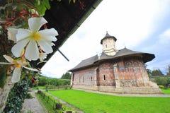 moldavia moldovitakloster Arkivfoton