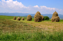 Travel to Romania: Moldavian haystack, Activities  Stock Image