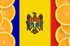 Moldavien flagga i vertikal ram för citrusfruktskivor royaltyfri bild