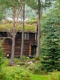 Molde zdjęcie royalty free