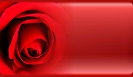 Molde abstrato do fundo da flor para o Web site, bandeira, cartão, convite Projeto abstrato do molde dos gráficos da informação ilustração stock