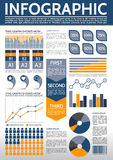 Molde comum de Infographic ilustração royalty free