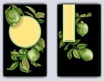 Molde da bandeira com ramos do citrino da limeira Bacjgr preto Imagens de Stock Royalty Free