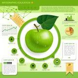 molde da educação Imagem de Stock Royalty Free