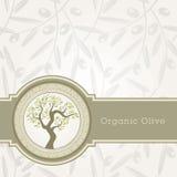 Molde da etiqueta do petróleo verde-oliva