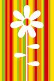 Molde da flor Foto de Stock