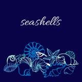 Molde da linha da arte de conchas do mar no fundo azul Vetor Fotografia de Stock