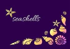 Molde de conchas do mar Flocos de neve Imagens de Stock
