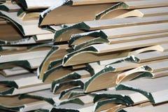 Molde decorativo Imagem de Stock Royalty Free