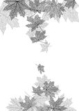 Molde do monochrome das folhas de outono Fotografia de Stock Royalty Free