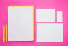 Molde do negócio do modelo com cartões, papéis, pena Fundo cor-de-rosa imagem de stock