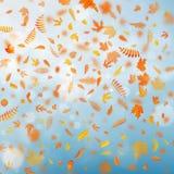 Molde do outono com as folhas coloridas no efeito do bokeh do ouro Eps 10 ilustração do vetor