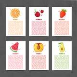 Molde do projeto da bandeira com decoração do alimento Ajuste o cartão com a decoração do fruto saudável, suculento Molde do menu ilustração stock