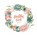 Molde do projeto da grinalda dos legumes frescos Vegetais do vintage de Handsketched Linha ilustração da arte Ilustração do vetor ilustração royalty free