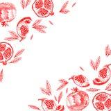 Molde do projeto do vintage do fruto da romã Fruto botânico ilustração royalty free