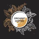 Molde do ramo realístico do café com folhas, flores e feijões Fotos de Stock Royalty Free