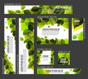Molde do relatório do espaço temporal da tipografia de Infographic do vetor Foto de Stock