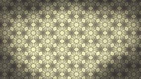 Molde do teste padrão do papel de parede floral do vintage ilustração do vetor