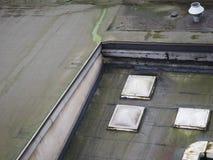 molde en el tejado plano fotografía de archivo