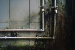 Molde en las paredes Fotografía de archivo