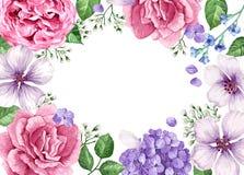 Molde floral da bandeira As flores na aquarela denominam isolado no fundo branco Imagens de Stock Royalty Free