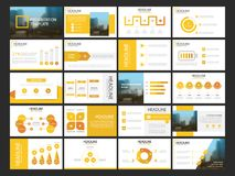 Molde infographic da apresentação de 20 elementos do pacote informe anual do negócio, folheto, folheto, inseto de propaganda, ilustração stock