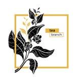 Molde na moda do vetor no quadrado Ramifique com folhas e flores Imagem de Stock Royalty Free
