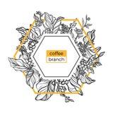 Molde na moda O café ramifica com folhas, flores e os feijões de café naturais Vetor Imagens de Stock