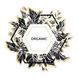 Molde na moda orgânico O café ramifica com folhas, flores e os feijões de café naturais Silhueta Vetor Fotos de Stock
