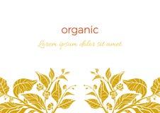 Molde na moda Ramo do chá com folhas e flores Imagem de Stock