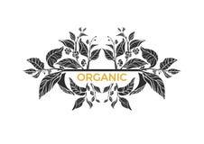 Molde na moda Ramos do chá com folhas e flores Teste padrão do vetor Foto de Stock Royalty Free