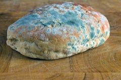Molde no pão Fotografia de Stock Royalty Free