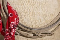 Molde ocidental 3 Fotografia de Stock Royalty Free