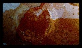 Molde textured abstrato do fundo, projeto abstrato do molde dos gráficos da informação foto de stock