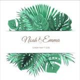Molde tropical exótico do projeto das folhas do verão Fotos de Stock Royalty Free